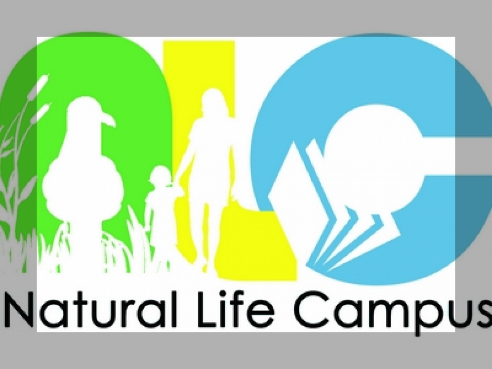 Natural Life Campus - Quarry Life Award